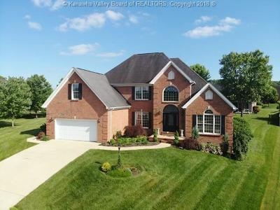 Scott Depot Single Family Home For Sale: 206 Summit Drive