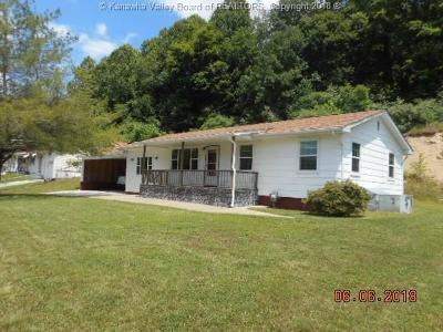 Chapmanville Single Family Home For Sale: 42 Little Rock Road