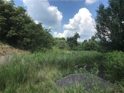 Ripley Residential Lots & Land For Sale: Claylick & Rt. 62