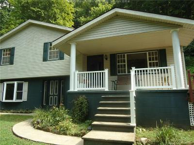 Chapmanville Single Family Home For Sale: 1126 Barkers Fork Road