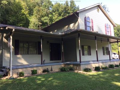 Chapmanville Single Family Home For Sale: 1079 Garretts Fork Road