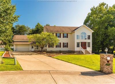 Scott Depot Single Family Home For Sale: 118 Dominic Drive