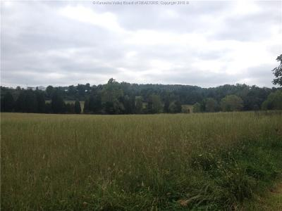 Ripley Residential Lots & Land For Sale: Claylick Road