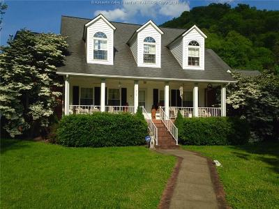 Chapmanville Single Family Home For Sale: 832 Godby Branch Road
