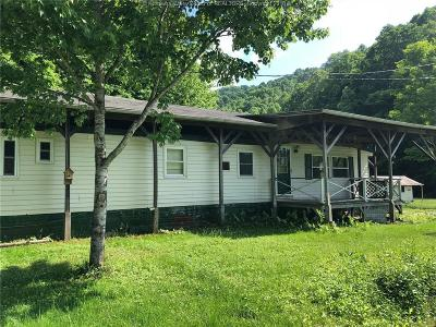 Chapmanville Single Family Home For Sale: 95 Dog Fork Road