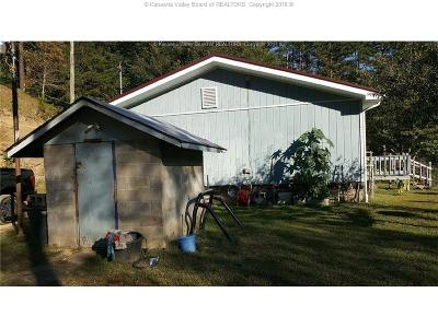 Chapmanville Single Family Home For Sale: 66 Grey Squirrel Branch Road