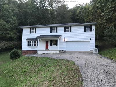 Chapmanville Single Family Home For Sale: 559 Hubert Hill Road