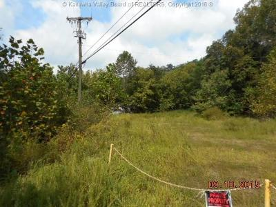 Chapmanville Residential Lots & Land For Sale: Mullins Terrace Road