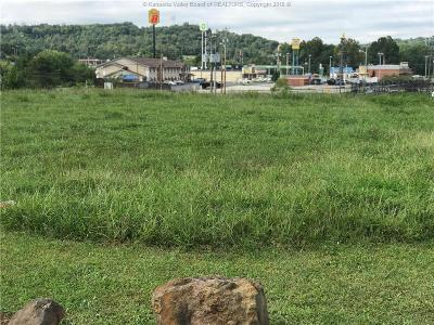 Ripley Residential Lots & Land For Sale: New Stone Ridge Road