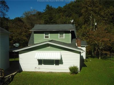 Chapmanville Single Family Home For Sale: 2229 Big Creek Road