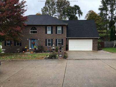 Hurricane Single Family Home For Sale: 308 Lower Overlook Drive