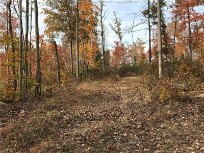 Hurricane Residential Lots & Land For Sale: Carol Drive