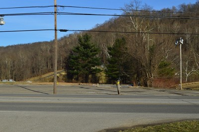 New Martinsville WV Residential Lots & Land For Sale: $350,000