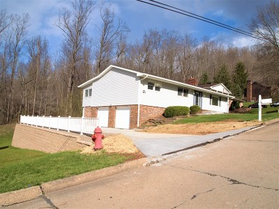 New Martinsville WV Single Family Home For Sale: $179,500