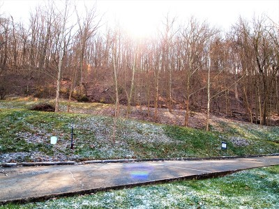New Martinsville WV Residential Lots & Land For Sale: $18,750