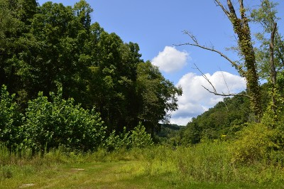 West Union WV Residential Lots & Land For Sale: $89,900
