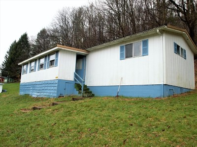 Hundred WV Single Family Home For Sale: $9,450
