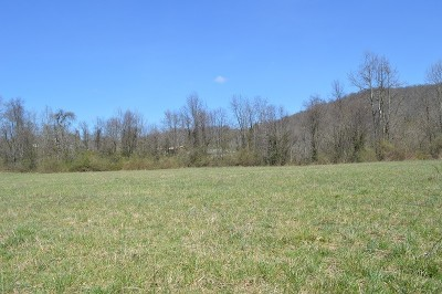 Friendly WV Residential Lots & Land For Sale: $18,000