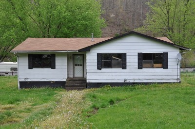Smithfield WV Single Family Home For Sale: $19,500