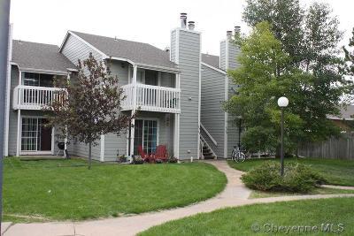 Laramie Multi Family Home For Sale: 715 & 631 Plaza