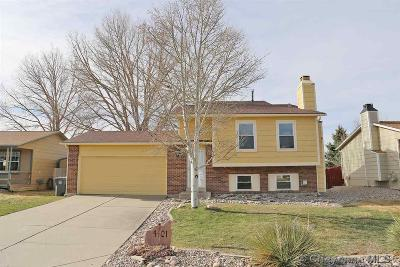 Cheyenne WY Single Family Home For Sale: $239,000