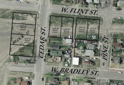 Laramie Residential Lots & Land For Sale: 358 W Flint St
