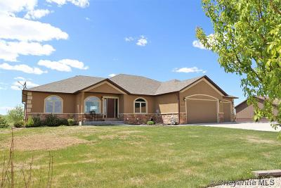 Cheyenne Single Family Home For Sale: 4512 Martingale Loop