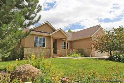 Laramie Single Family Home For Sale: 2007 Nighthawk Dr