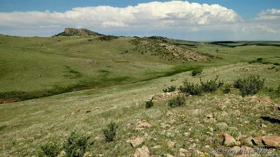 Granite Canon WY Residential Lots & Land For Sale: $200,000