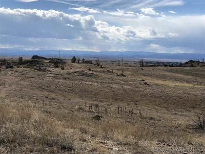 Laramie Residential Lots & Land For Sale: TR 12 Summer Rain Ranch