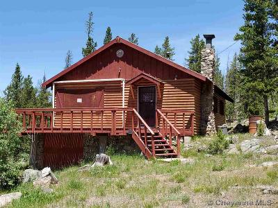 Laramie Single Family Home For Sale: 203 Forest Service Rd 543