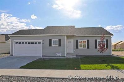 Cheyenne  Single Family Home For Sale: 318 Orange St