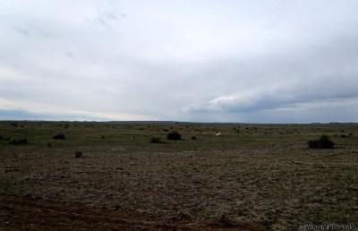 Casper Farm & Ranch For Sale: Base Property 5 North Of Casper