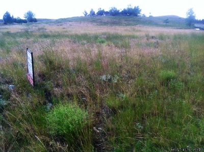 Residential Lots & Land For Sale: Lot 19 Mountain Ridge