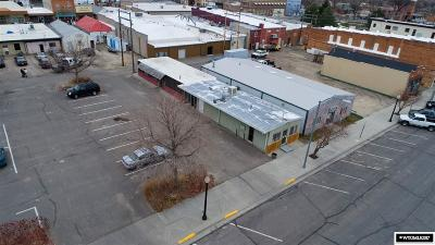 Douglas Commercial For Sale: 117 N 2nd St
