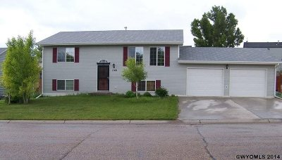 Douglas Single Family Home For Sale: 1149 North Fork Dr