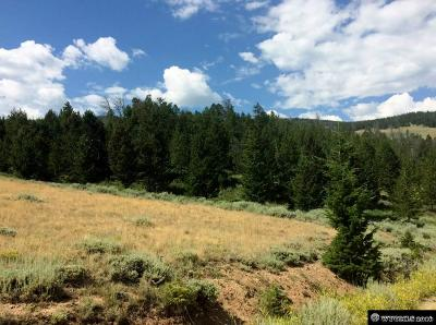 Residential Lots & Land For Sale: Lots 49 & 50 Upper Little Warm Springs Subd.