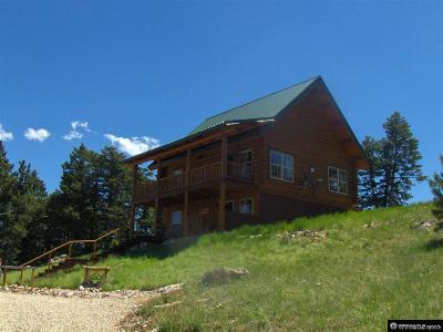 Buffalo Single Family Home For Sale: 19 High Meadow
