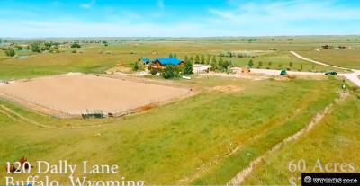 Buffalo Single Family Home For Sale: 120 Dally