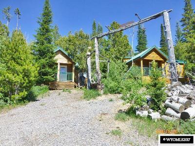 Kemmerer Single Family Home For Sale: 182 East Dinosaur