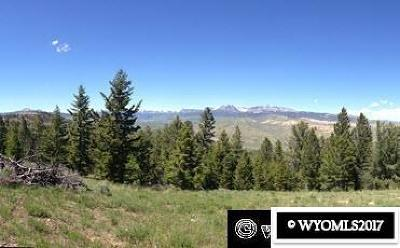 Residential Lots & Land For Sale: 59 Snowshoe Court