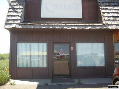Urie Commercial For Sale: 84 Meadow Street