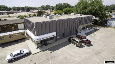 Douglas Commercial For Sale: 830 E Richards St