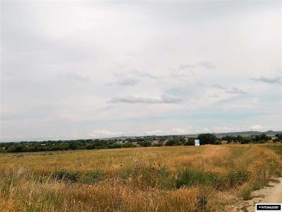 Douglas Residential Lots & Land For Sale: 1042 Prosperity Parkway