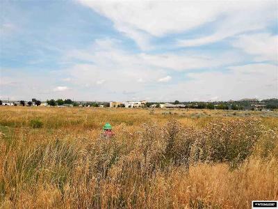 Douglas Residential Lots & Land For Sale: 964 S Riverbend Dr
