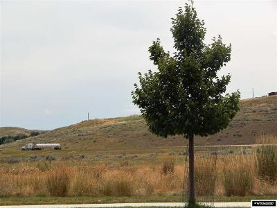 Douglas Residential Lots & Land For Sale: 981 S Wind River Dr