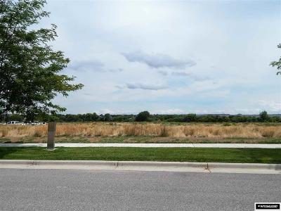 Douglas Residential Lots & Land For Sale: 999 Prosperity Parkway