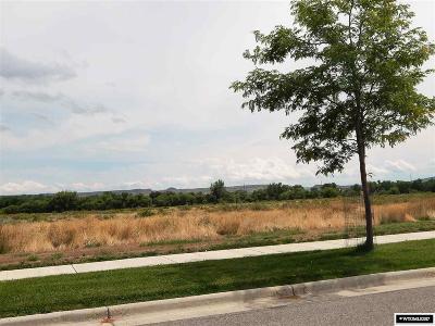Douglas Residential Lots & Land For Sale: 922 Alliance Ave.
