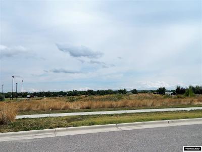 Douglas Residential Lots & Land For Sale: 910 Alliance