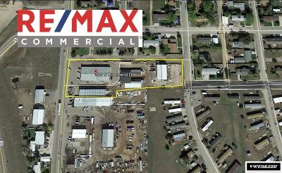 Douglas Commercial For Sale: 333 S Riverbend